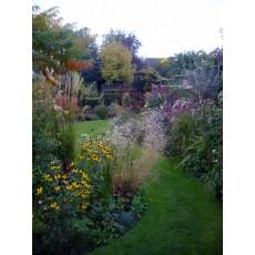 Shropshire - May to October