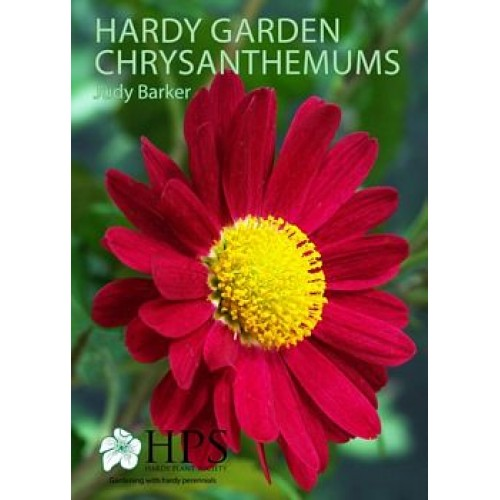 Booklet: Chrysanthemums