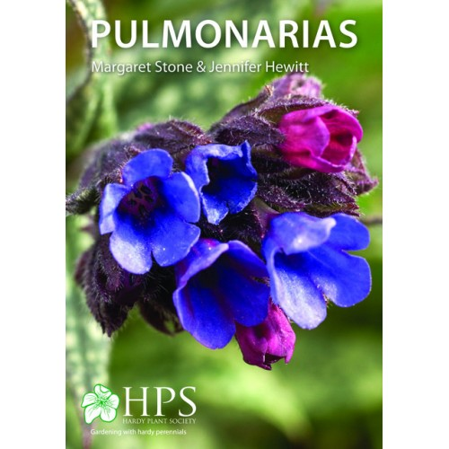 Booklet: Pulmonarias